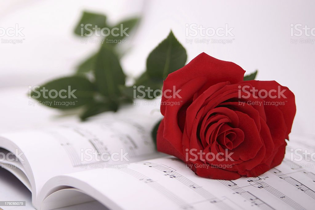melody of love royalty-free stock photo