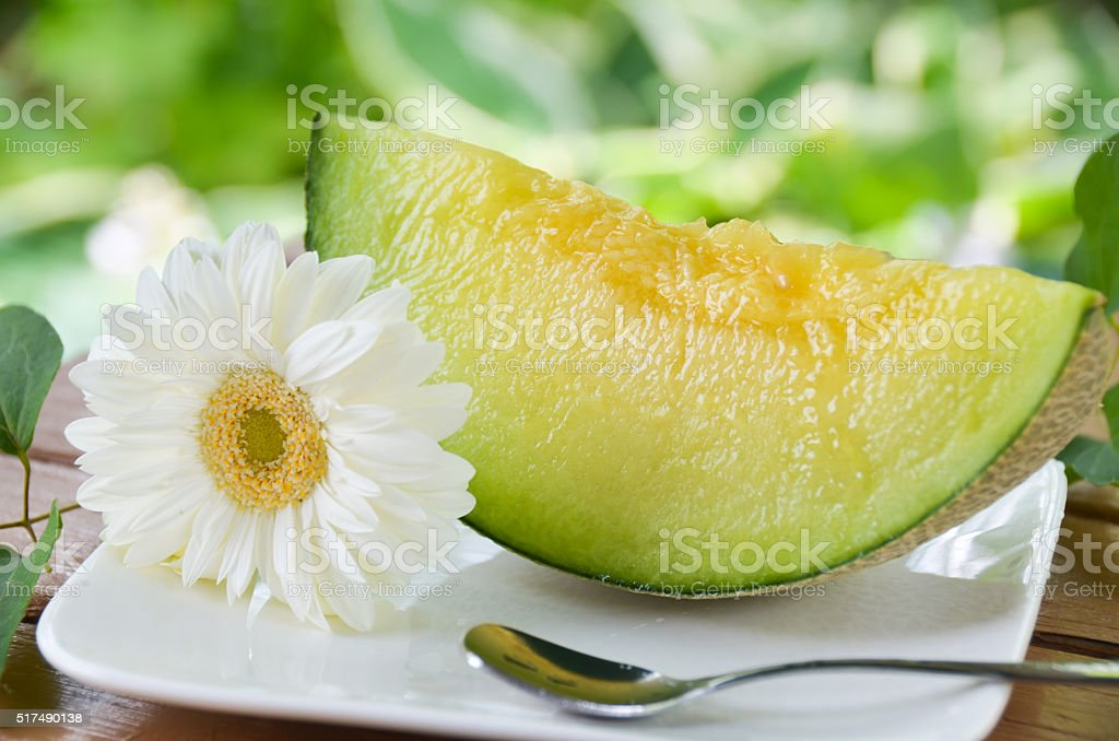 melon at garden table stock photo