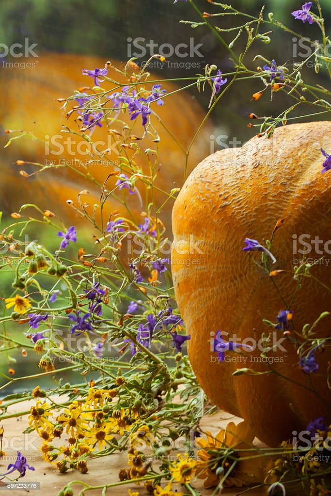 Melon, lying with colorful wild flowers on wooden background and stock photo