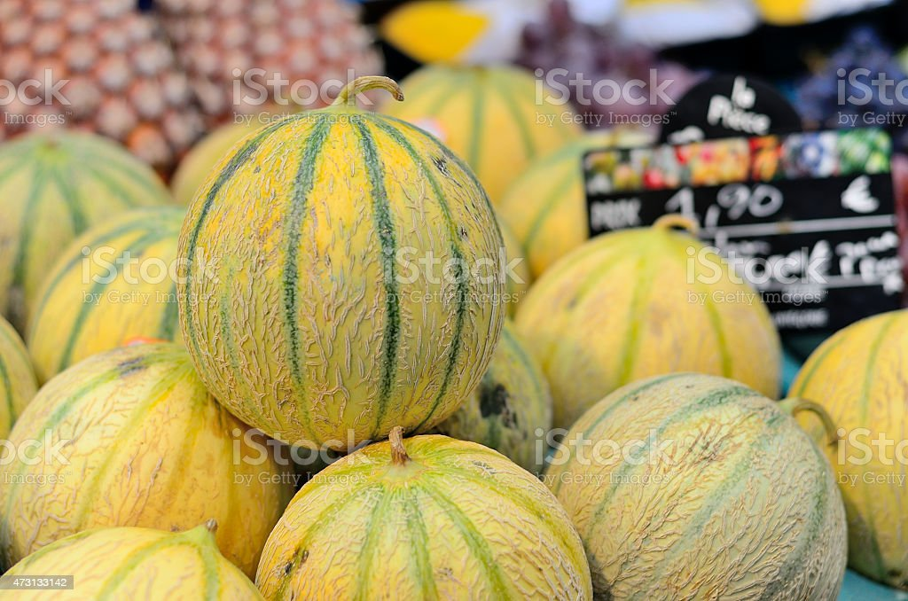 Melons on the market. stock photo