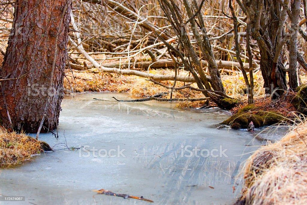 Melting Mountain Stream royalty-free stock photo
