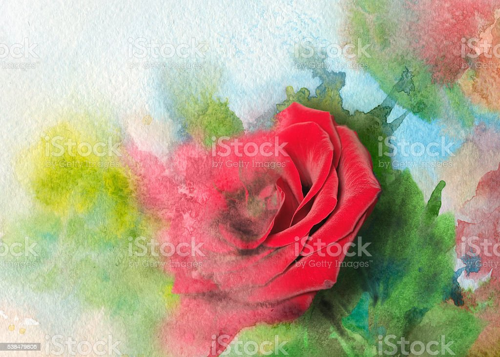 melting rose in watercolor stock photo