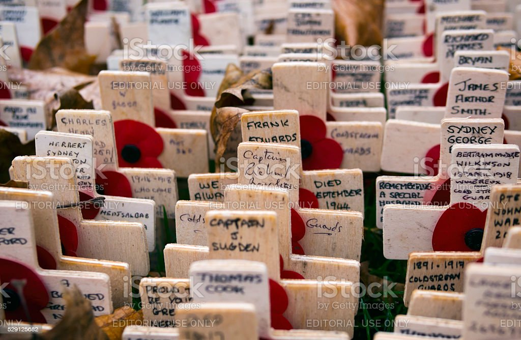 Memorial crosses for Armistice Day stock photo