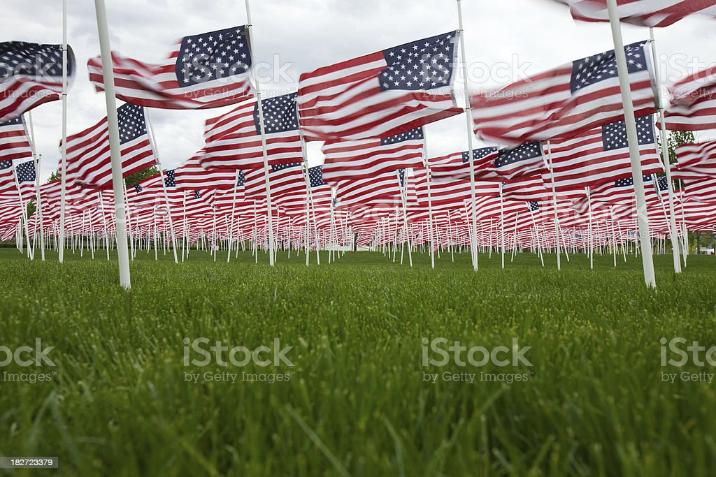 Memorial Day 1000 flag remembrance. stock photo