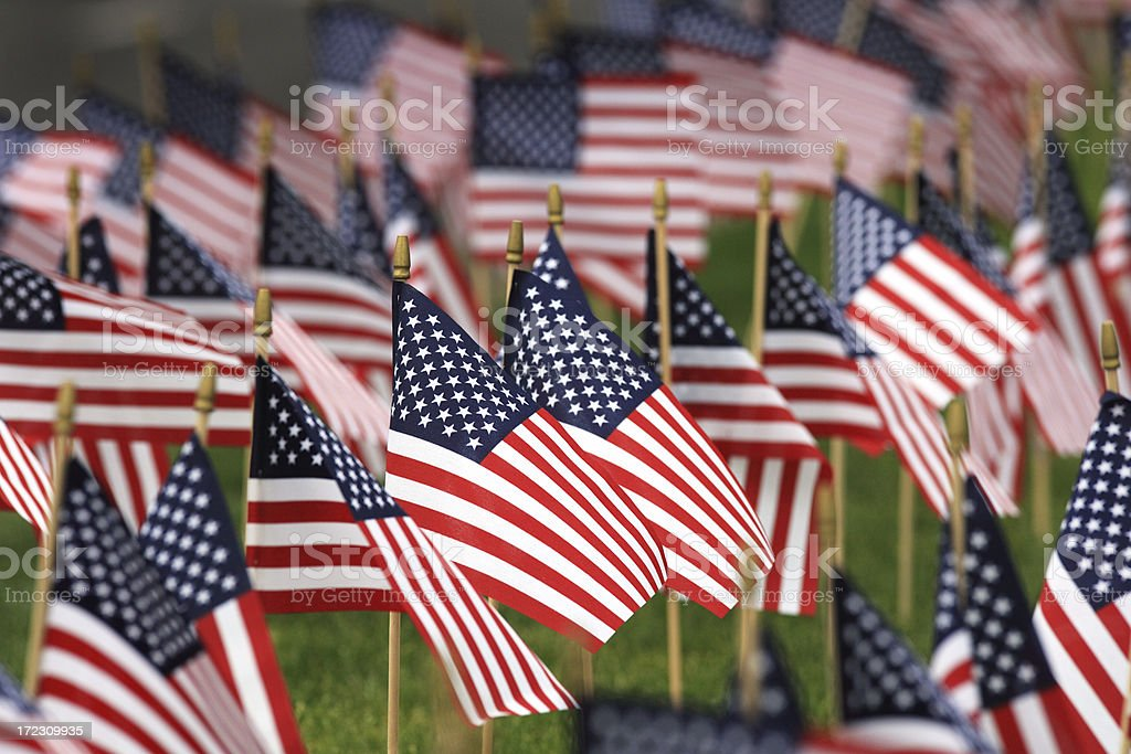 Memorial Day flags. stock photo