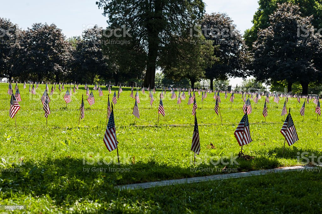 Memorial Flags stock photo
