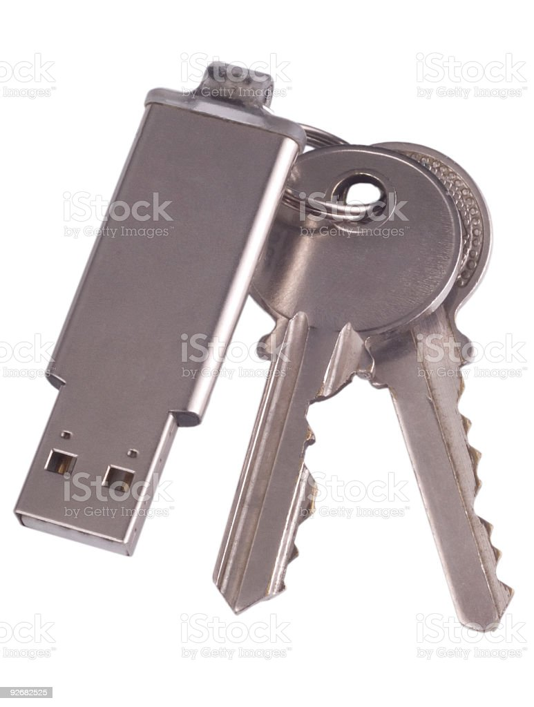 Memory stick 03 royalty-free stock photo