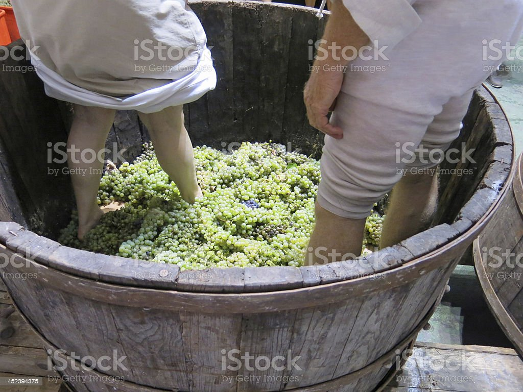 men and women inside the tank to press white grapes stock photo