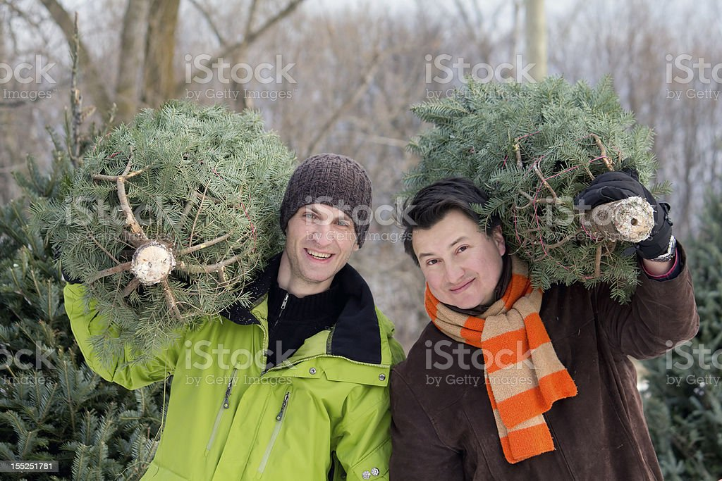 Men carrying Christmas trees stock photo