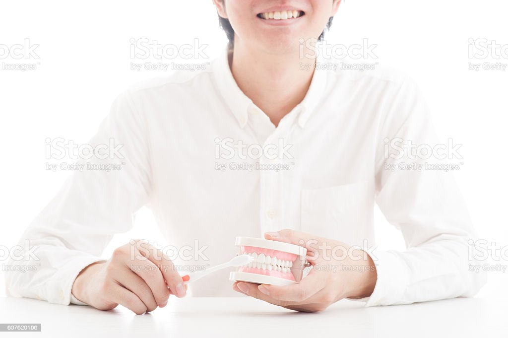 Men have a model of teeth stock photo