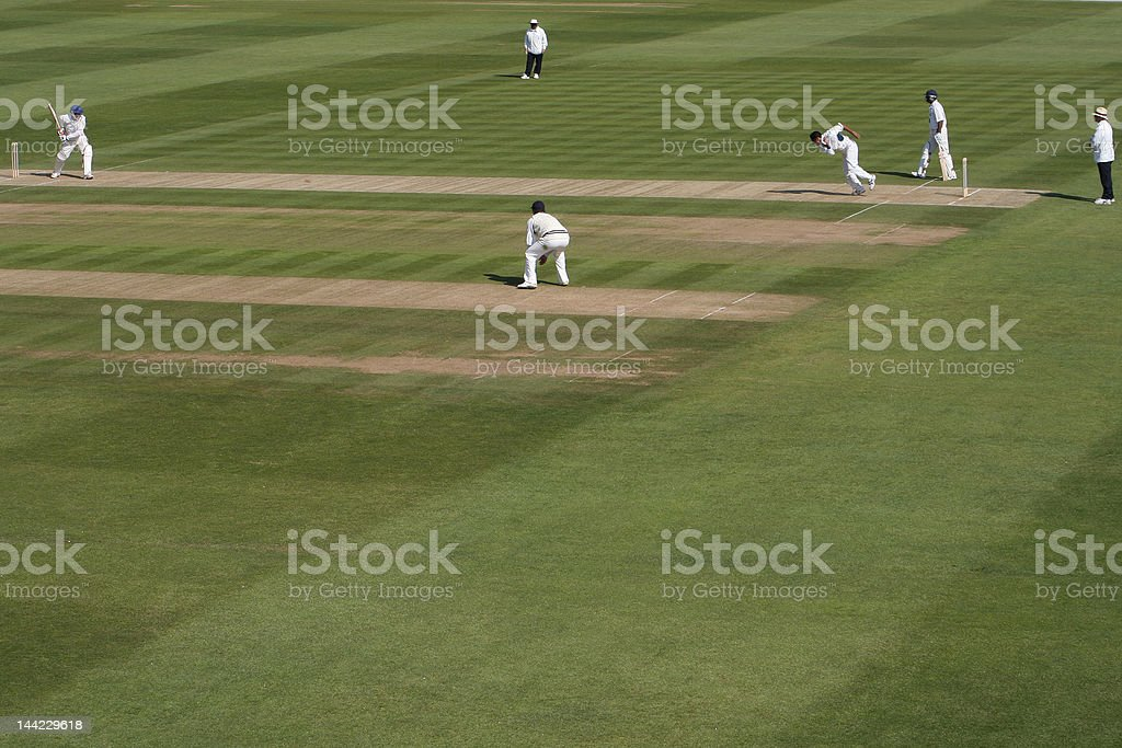Men playing a cricket match in an open field royalty-free stock photo