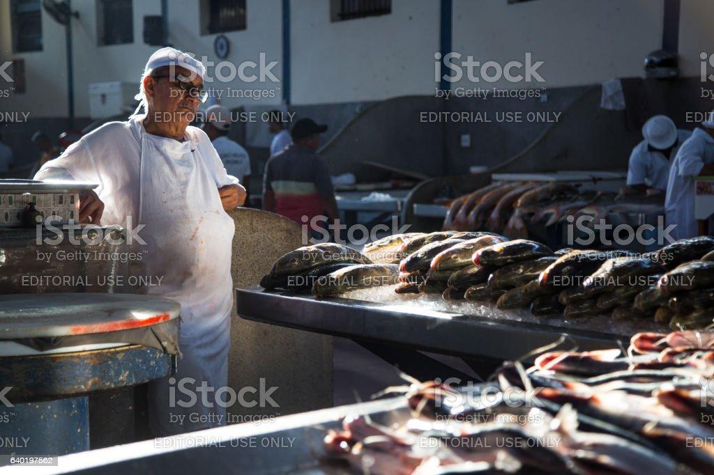 Men selling Fish in Market Ver-o-Peso, Belém, Brazil stock photo