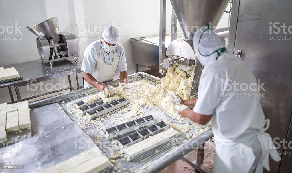 Men working at a dairy factory stock photo