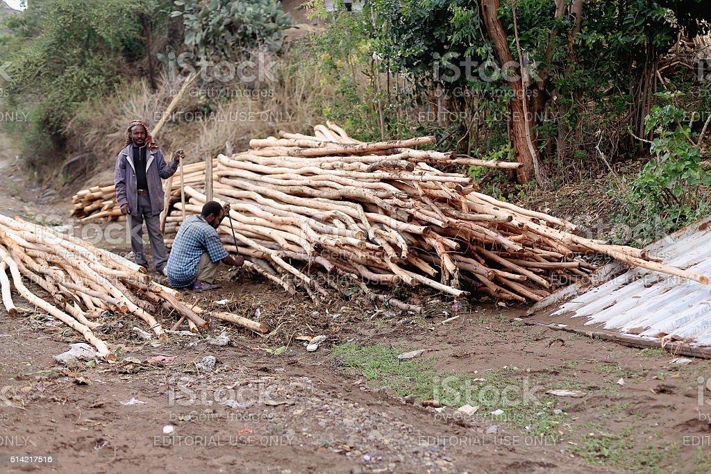 Men working with eucalyptus logs. Khat market in Degan-Ethiopia. 0115 stock photo