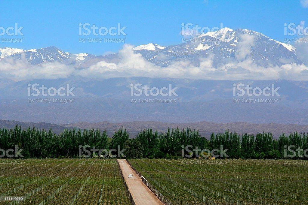 Mendoza in Argentina royalty-free stock photo