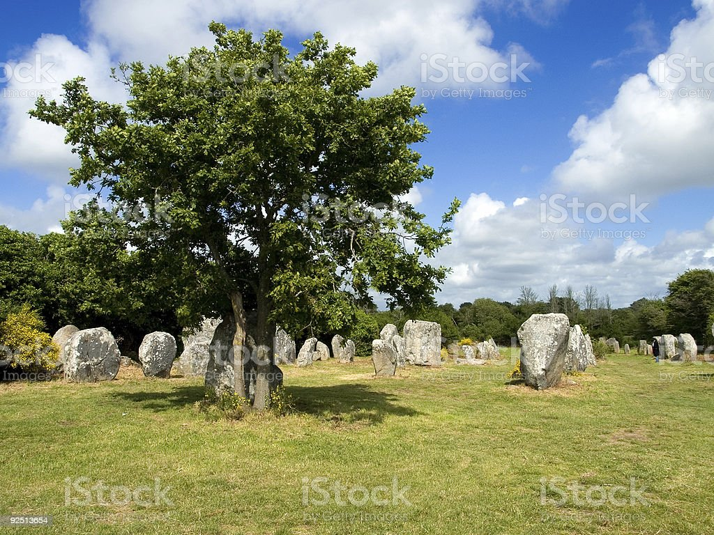 Menhirs and a tree stock photo