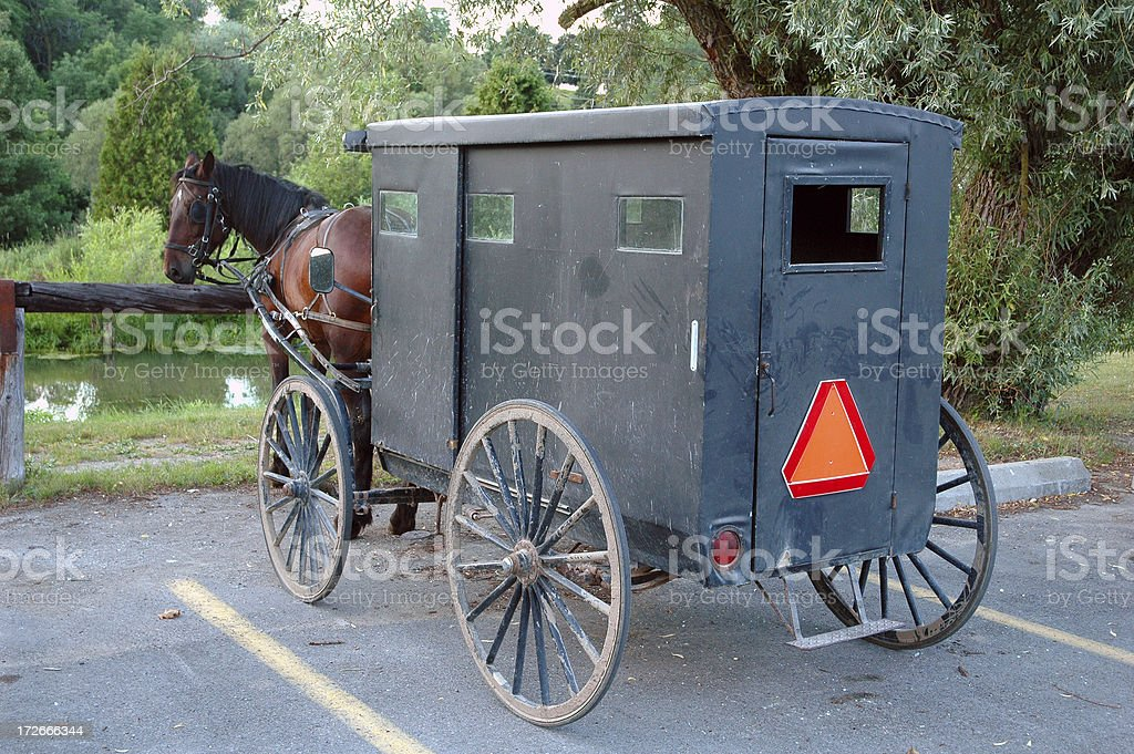 Mennonite Horse & Buggie royalty-free stock photo