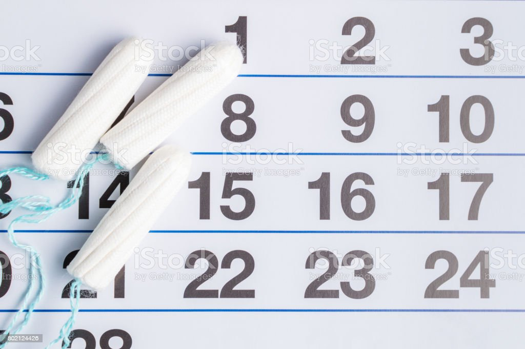 Menstrual calendar with tampons and pads. Menstruation cycle. Hygiene and protection stock photo
