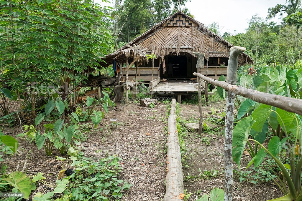 Mentawai tribe house in the deep of the jungle stock photo