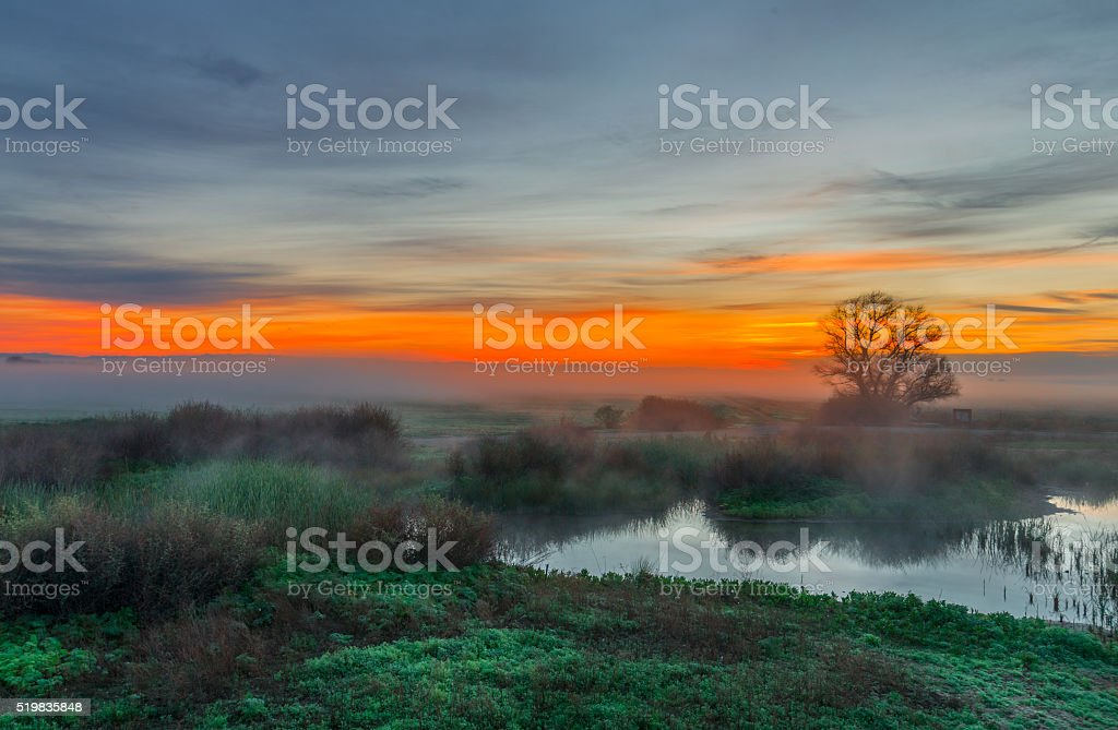 Merced National Wildlife Refuge at Sunrise, California, USA stock photo