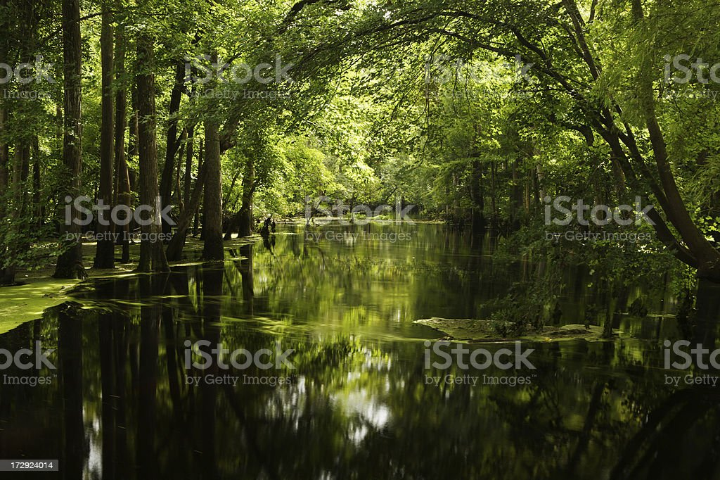Merchant's Millpond royalty-free stock photo