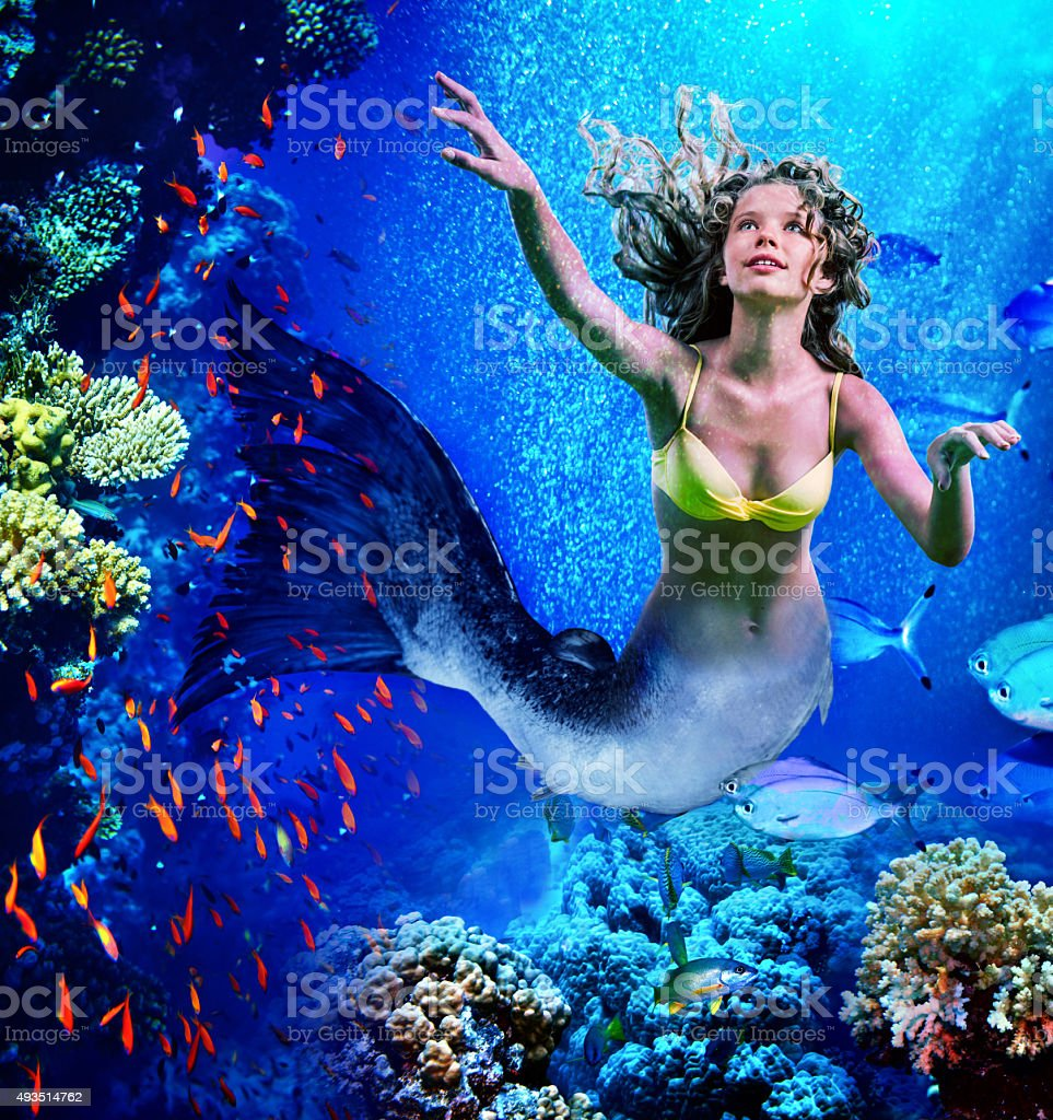 Mermaid dive underwater through coral stock photo