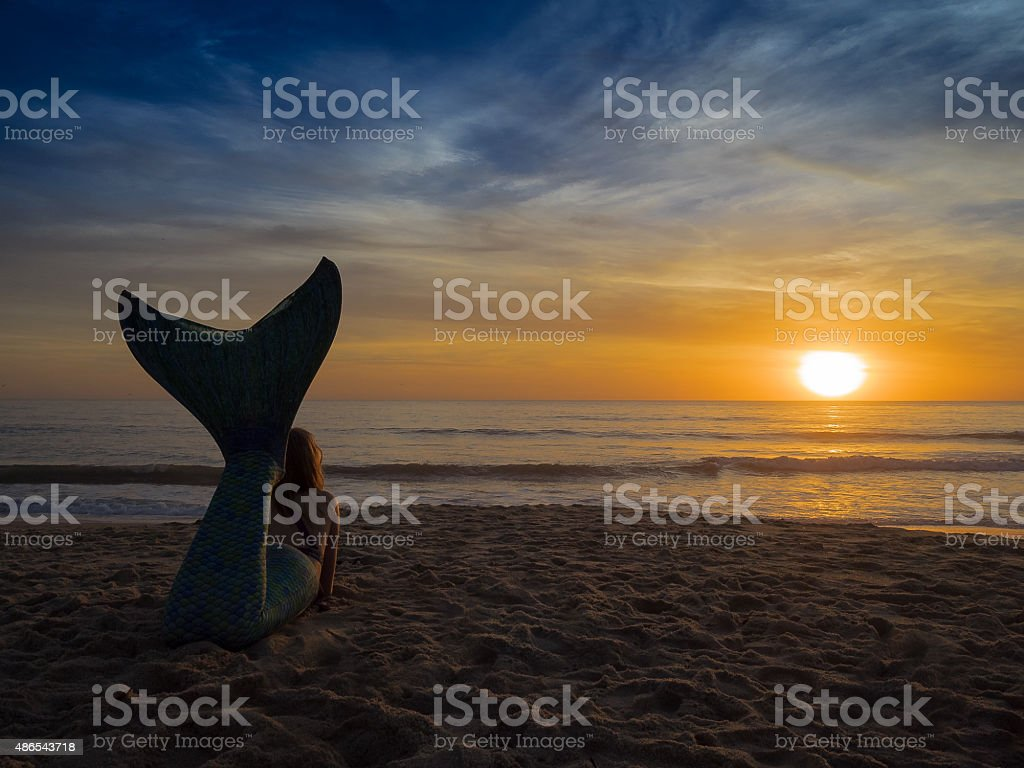 Mermaid Dreams stock photo