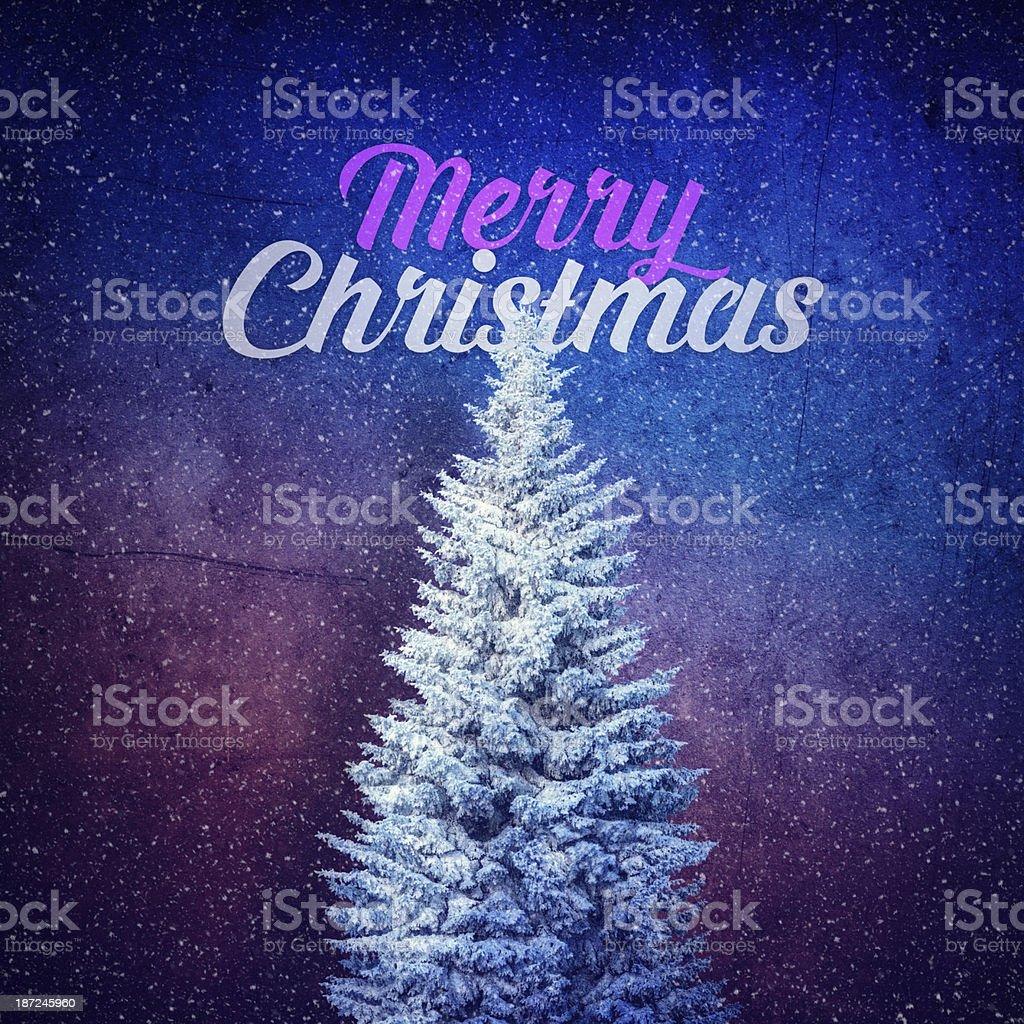 Merry Christmas royalty-free stock photo