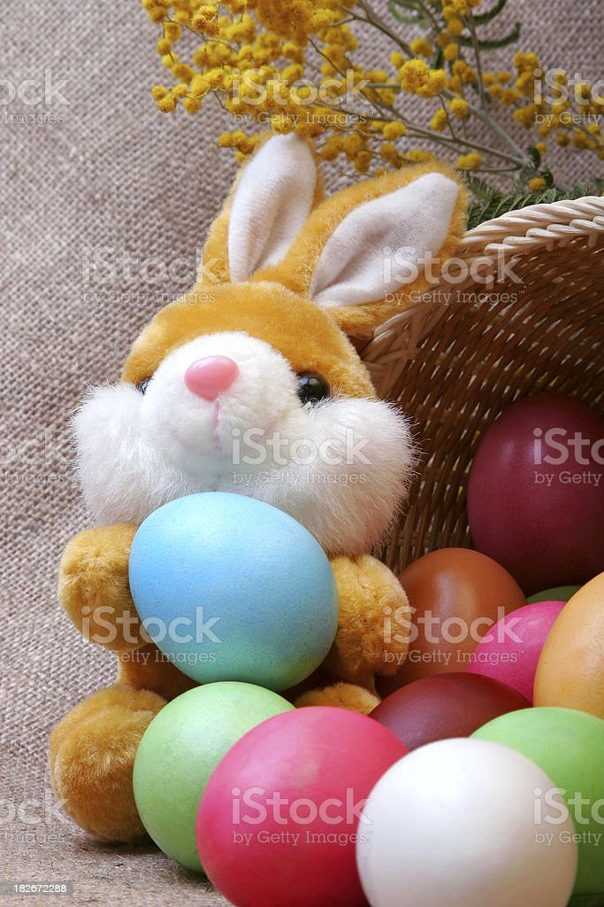 Merry Rabbit with Easter eggs royalty-free stock photo