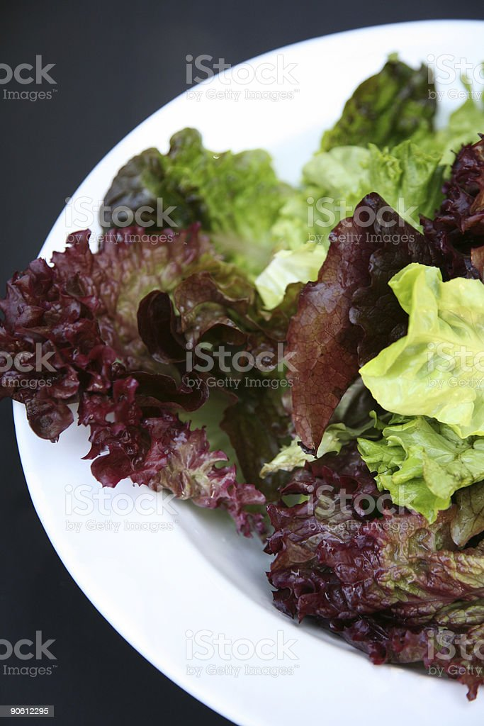 Mesclun salad royalty-free stock photo