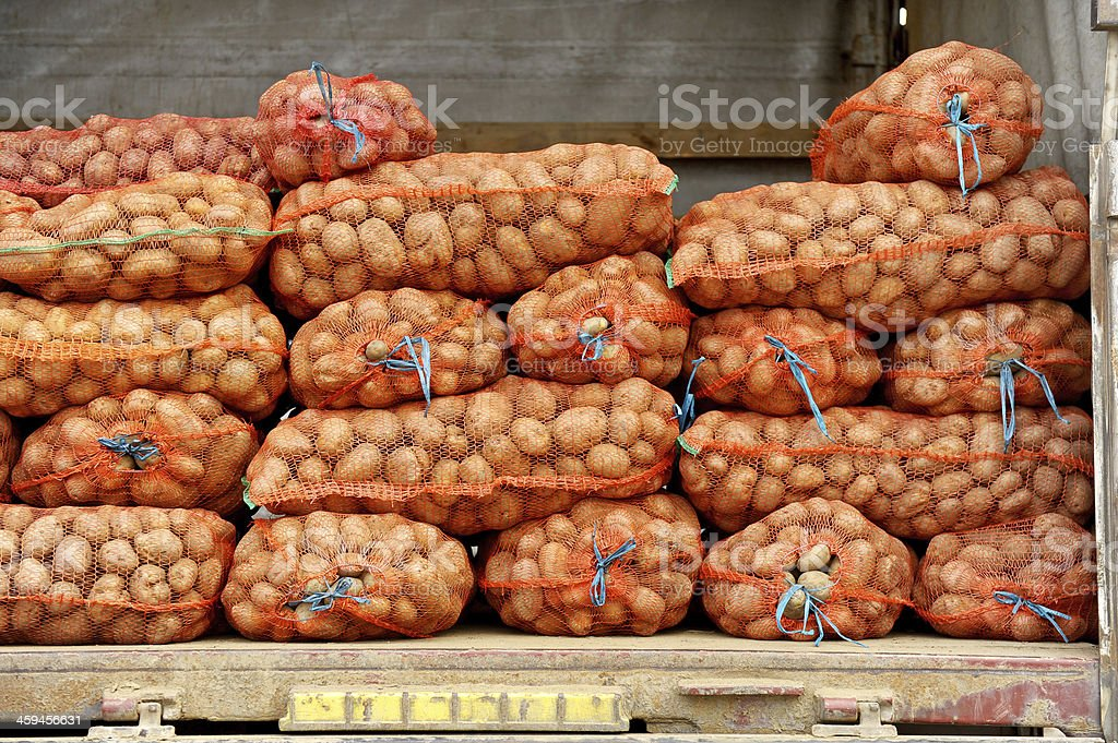Mesh Bags With Potatos In A Truck stock photo