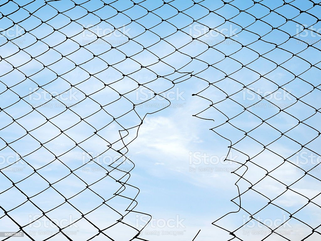 Mesh fence royalty-free stock photo