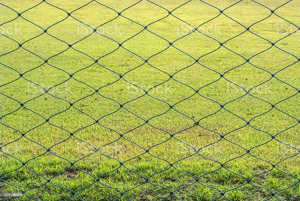Meshes and grasses . stock photo