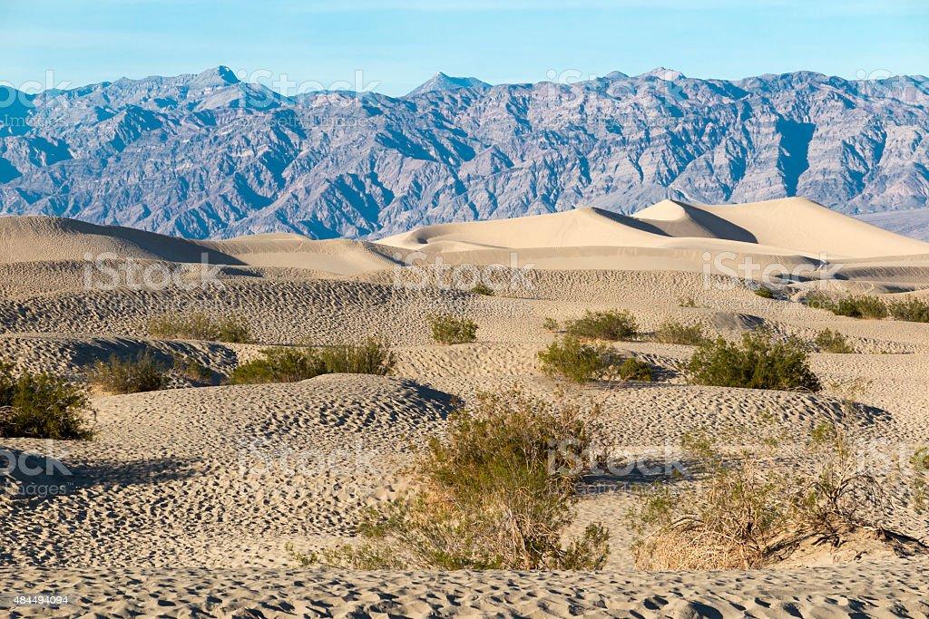 Mesquite Flat Dunes stock photo