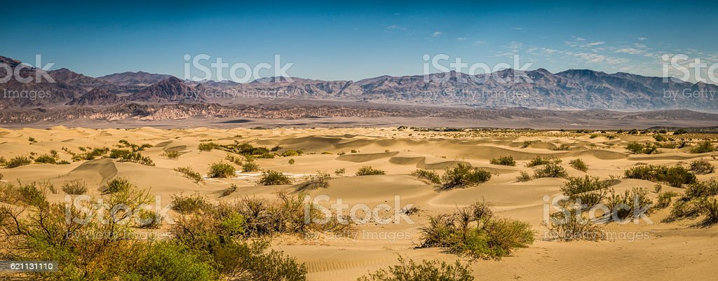 Mesquite Waves stock photo
