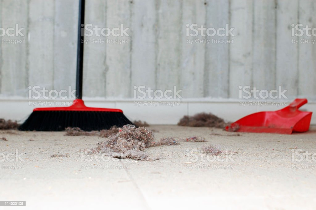 Mess to Sweep Up royalty-free stock photo