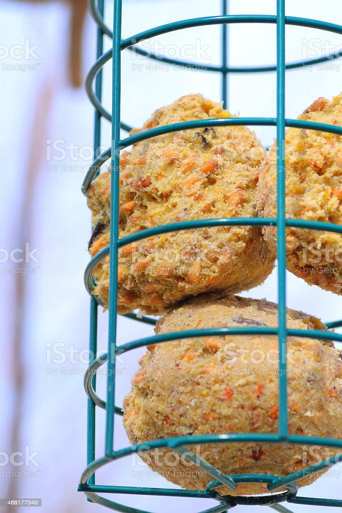 Metal bird feeder with seeds bird food close-up stock photo