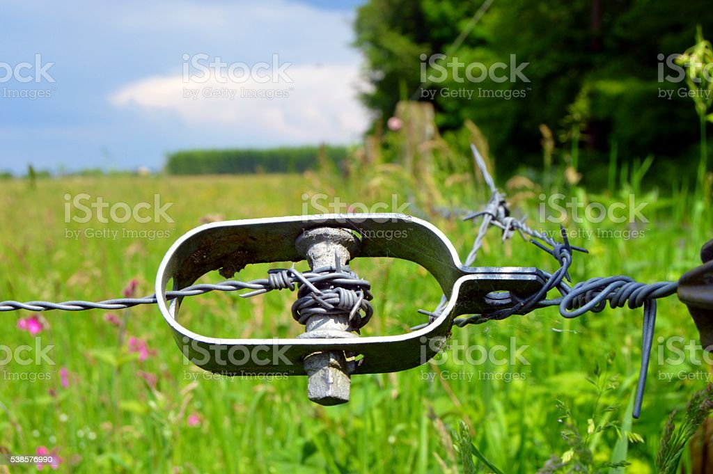 Metal carrier strap on barbed wires. stock photo