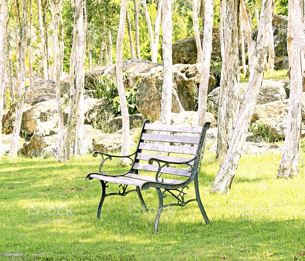 Metal chair in the garden royalty-free stock photo