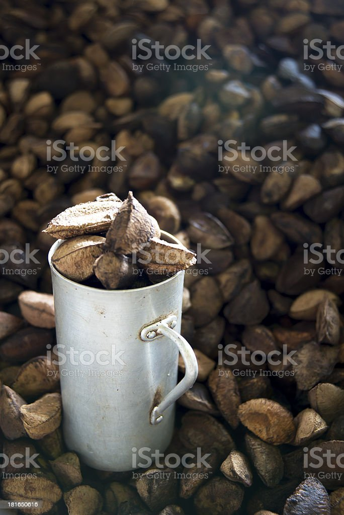 Metal cup and Brazil nut stock photo