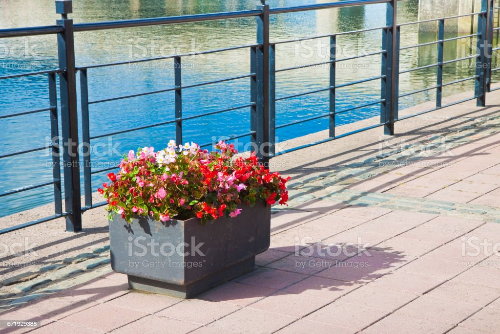 Metal flowerpot with red flowers in a sidewalk by the lake stock photo