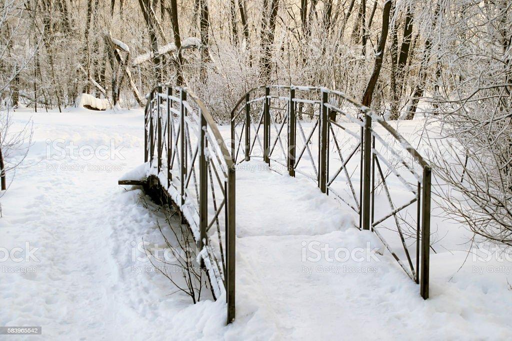 Metal footbridge stock photo
