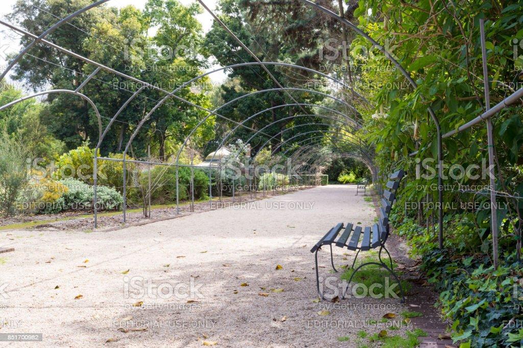 Metal Framed Arbor, Adelaide Botanic Garden stock photo