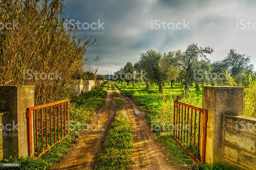 metal gate open on a dirt path stock photo