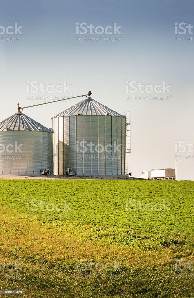 Metal Grain Bins and Truck by a Green Farm Field stock photo