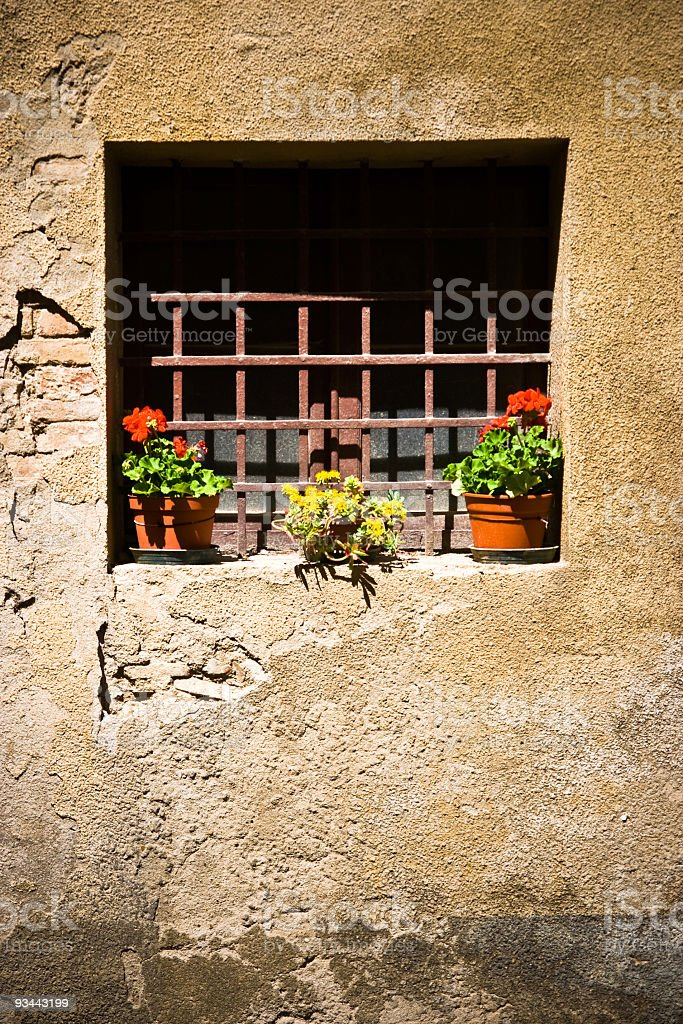 Metal Grate Window With Flowers royalty-free stock photo