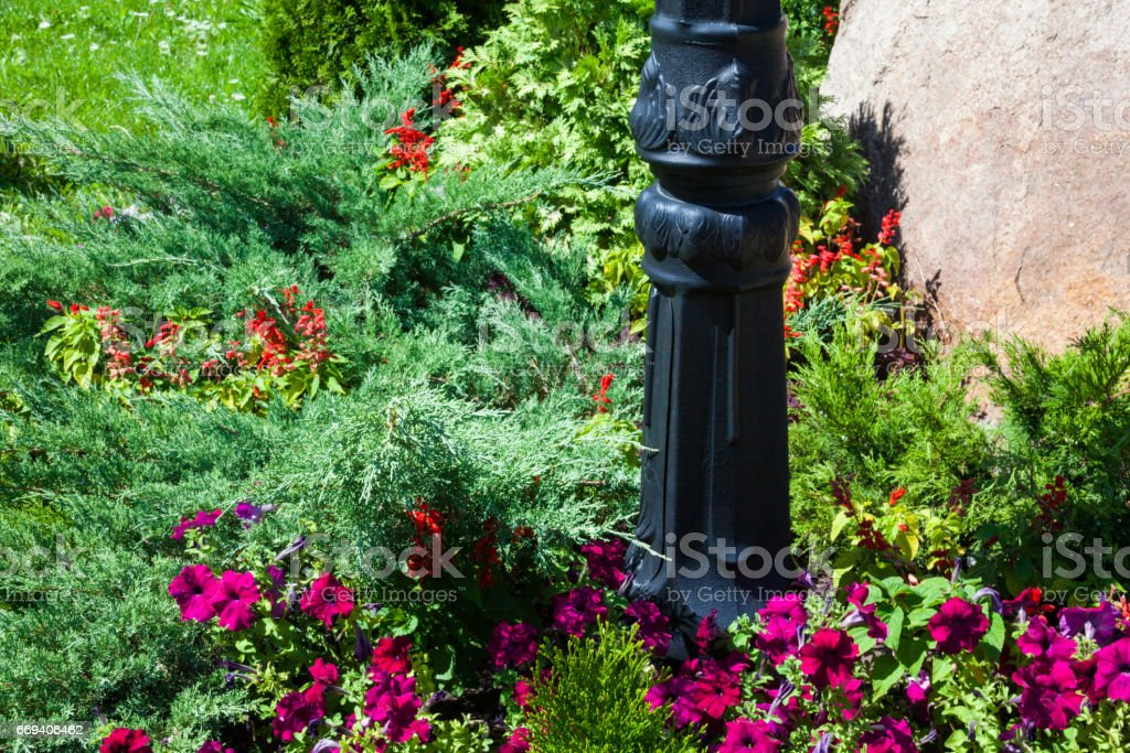Metal lamp post in the flowerbed stock photo