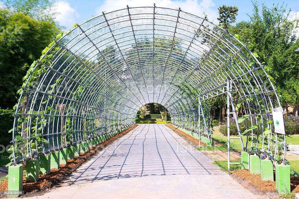 Metal pergola in park ( Metal arbor ) stock photo