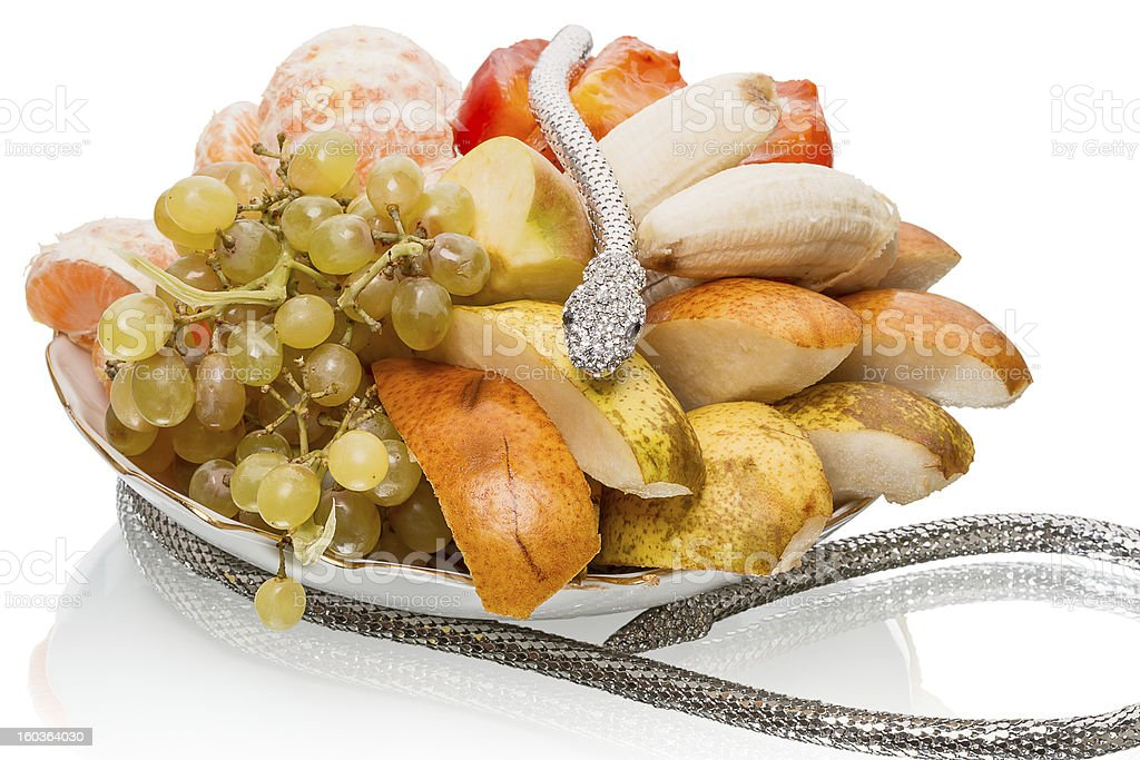 Metal snake and fruit royalty-free stock photo