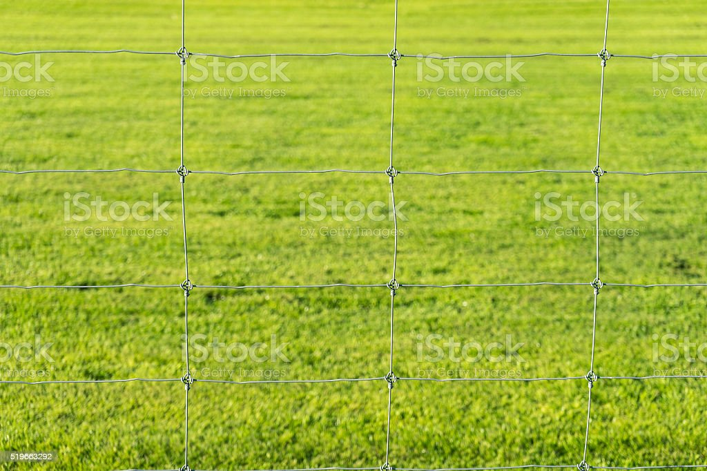 metal wire fence and grass background stock photo